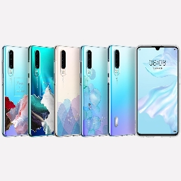 HUAWEI P30 Pro Clear Case